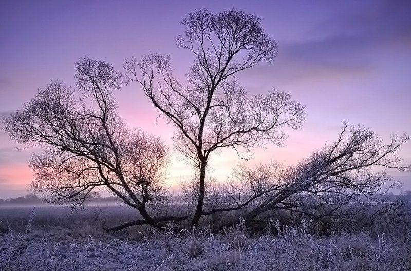 природа, пейзаж ***photo preview