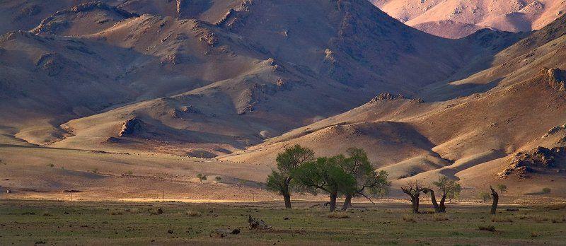 монголия Монголия.В долине р.Селенга.photo preview