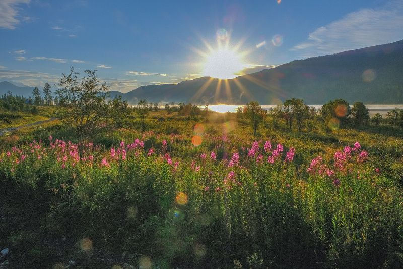 Казахстанский Алтай, август 2018 г. Фотография № 32photo preview