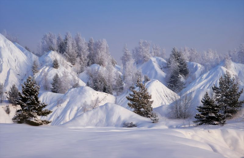 Зимы коленки ).photo preview