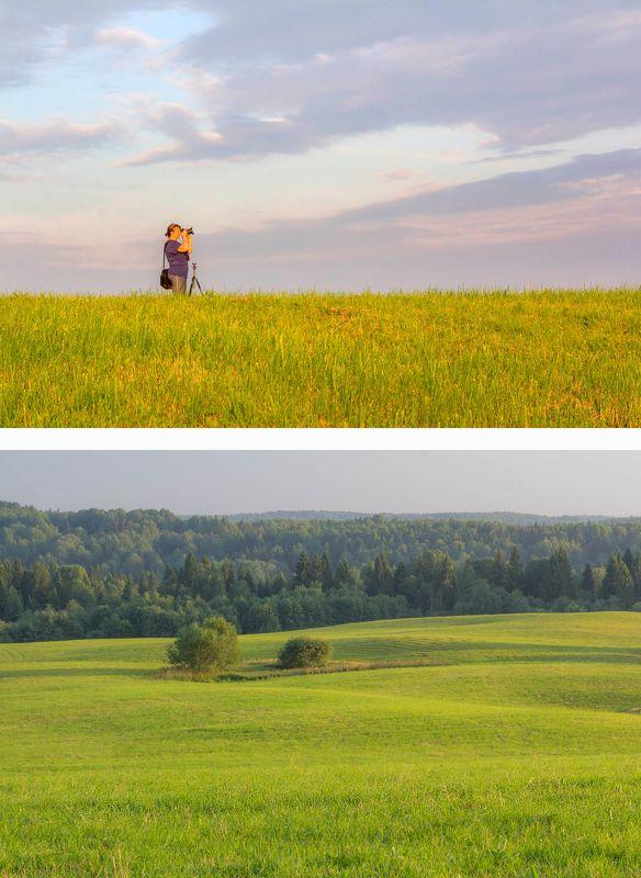 вепсский лес Фототур в Вепсский лесphoto preview