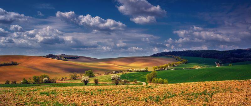 Чехия Южная Моравия небо облака весна поля пейзажи путешествия природа деревья трава Понорамы Моравииphoto preview