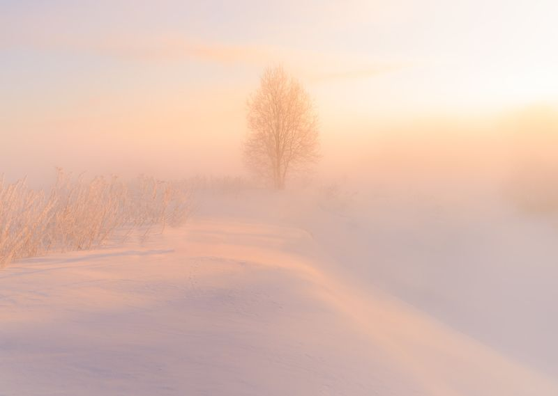 Затаилось в морозном туманеphoto preview