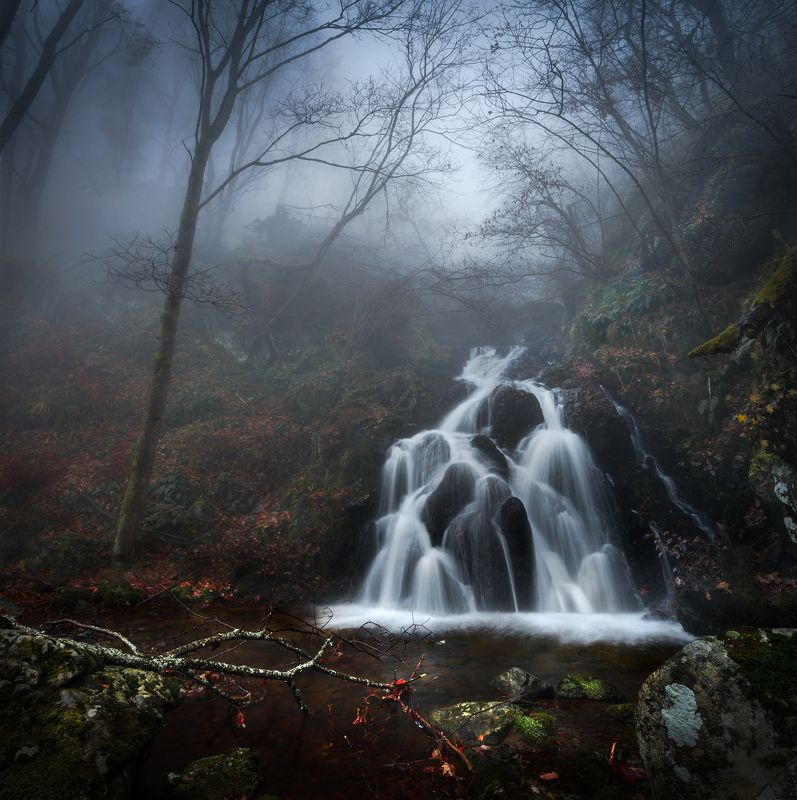 landscape, nature, scenery, forest, wood, autumn, mist, misty, fog, foggy, river, waterfall, longexposure, mountain, vitosha, bulgaria, туман, лес, oсень Late autumn afternoonphoto preview