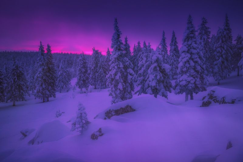 урал, таганай, зима Елочнаяphoto preview