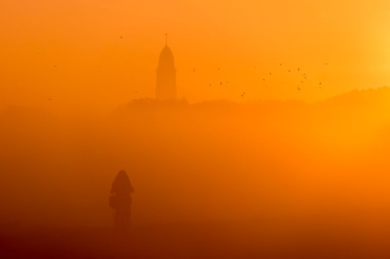 #landscape #yellow #fog Code Yellowphoto preview
