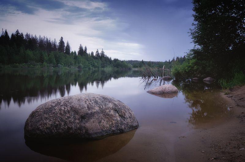 лес, природа, пейзаж, лето, река, вода, ручей, подмосковье В тишинеphoto preview
