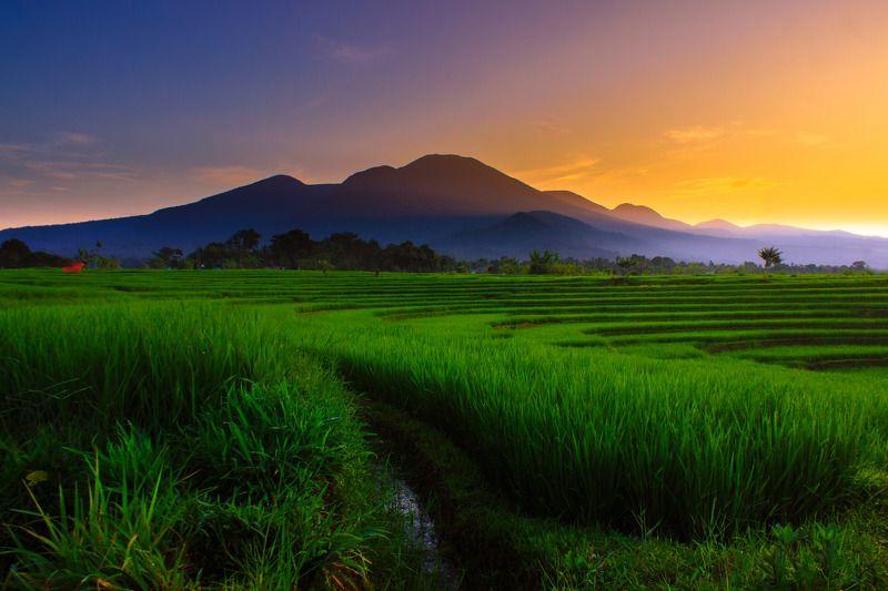 #landscape #nature #sunset #reflection #bengkuluutara morning sunrise at mountain range north bengkulu, indonesia - asiaphoto preview