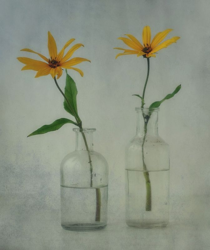 натюрморт,цветы,топинамбур две грации...photo preview