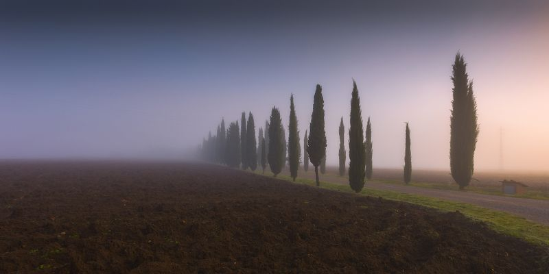 Уходящие в туманphoto preview