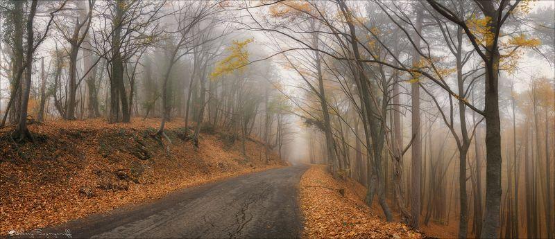 крым, ай петри, дорога, туман, осень Осенняя мистика Крыма.photo preview
