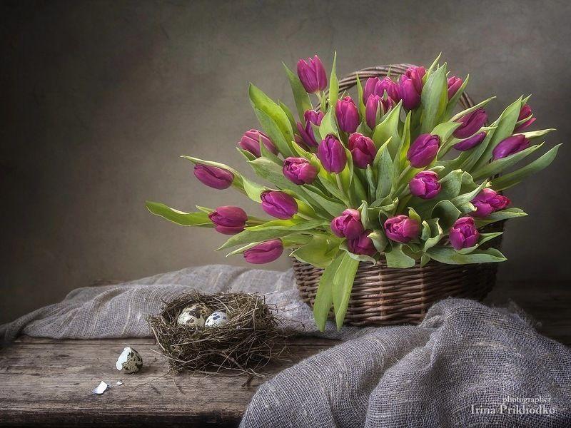 натюрморт, цветочный, корзина ,  тюльпаны, перепелиые яйца, винтажный натюрморт Весеннее настроениеphoto preview