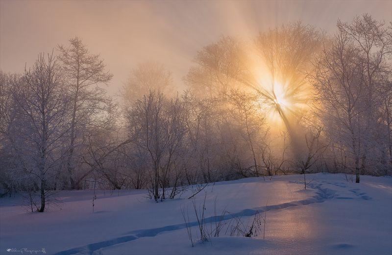 Око зимы.photo preview