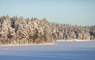 Зима за Полярным кругом