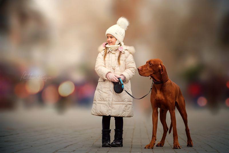 собака, анималистика, зима,   портрет, венгерская выжла, ребенок, парк Друзьяphoto preview