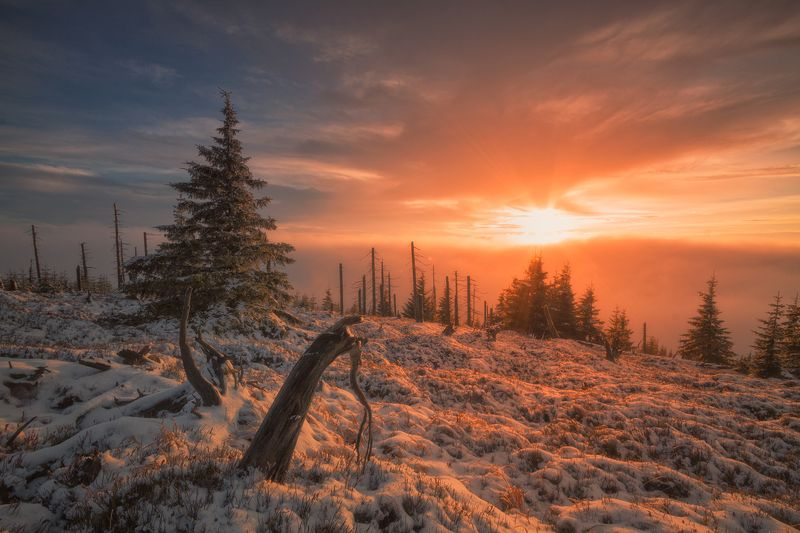 landscape,canon,sunrise,winter Bowing to the Sun...photo preview
