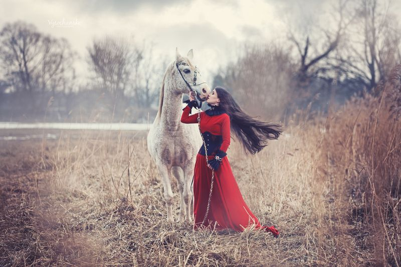 horse, grey, white, portrait, lady, girl, woman lady with horsephoto preview