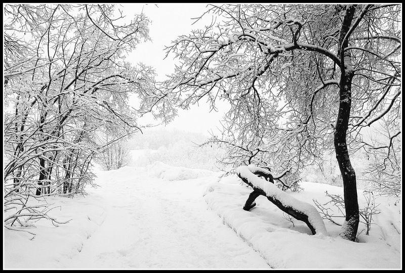 сергей алексеев, Графика февраляphoto preview