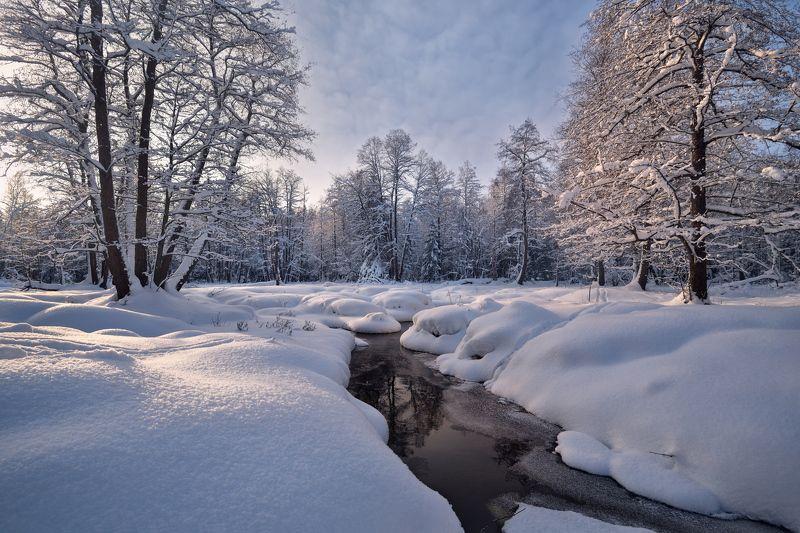 зима,лес,снег,река,мороз в зимнем лесуphoto preview