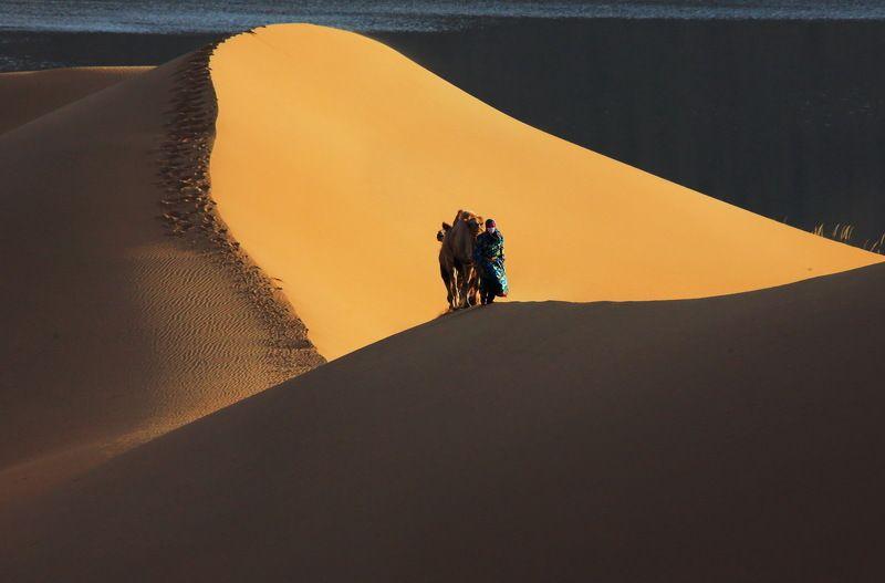 Desertphoto preview