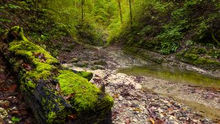 Тишина на речке Каменистой