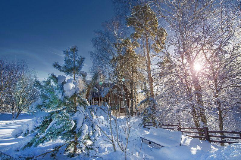 Зимняя прогулка или февраль в подмосковье...photo preview