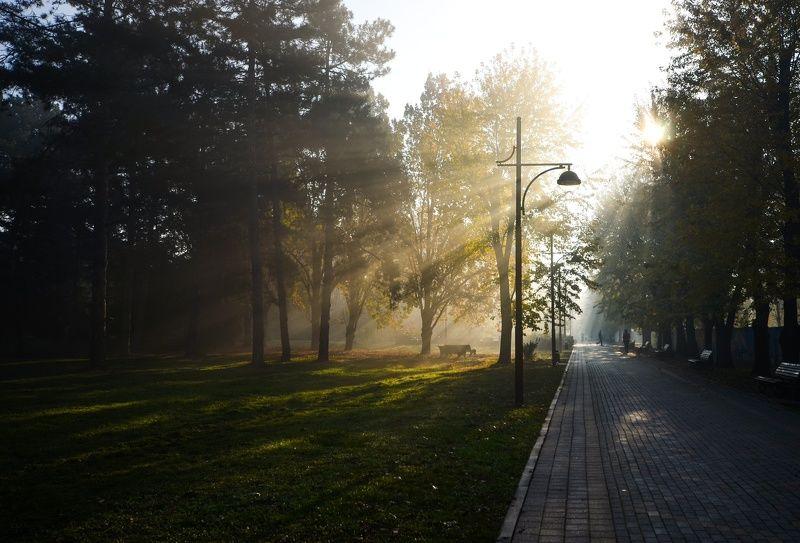 город, утро, туман, лучи Лучистое утроphoto preview