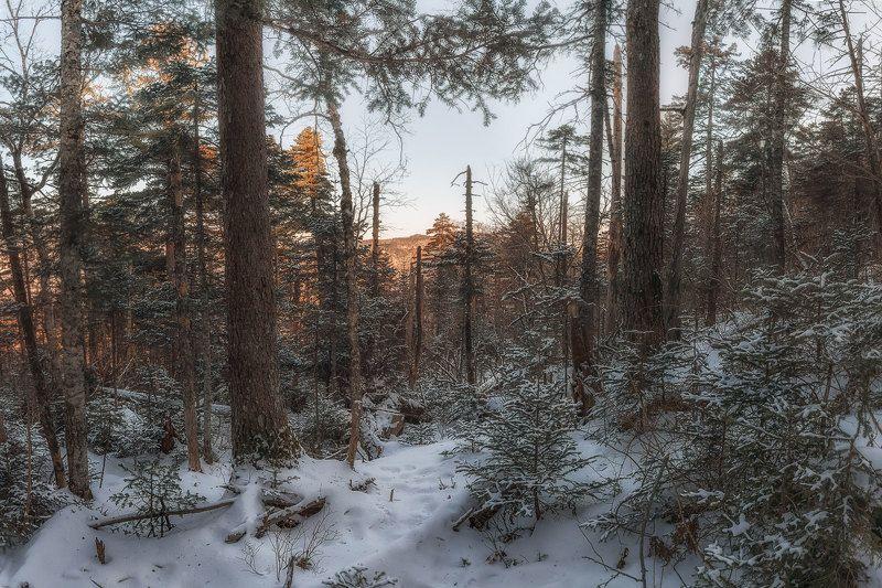 Тихий февральphoto preview