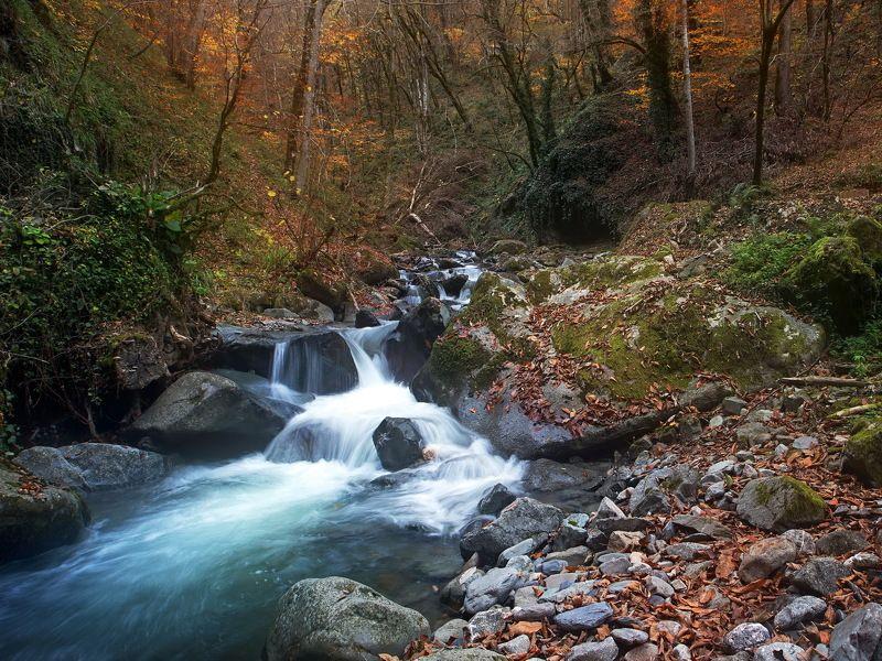 река перекат осень По осенней реке.photo preview