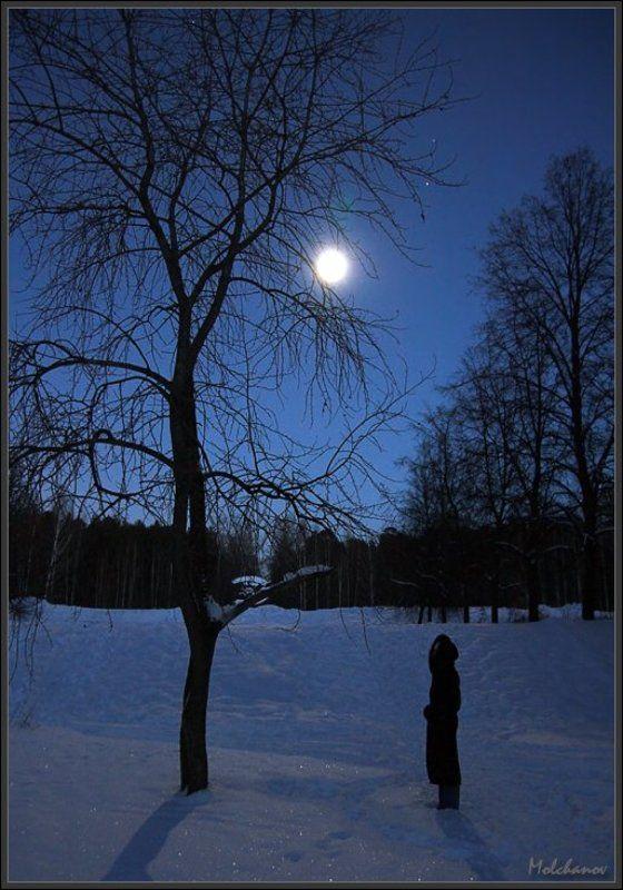 екатеринбург парк снег луна дерево небо девушка звезды Под лунойphoto preview