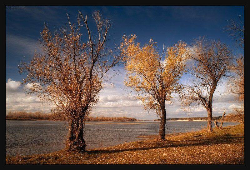 река, обь, осень Три с половинойphoto preview