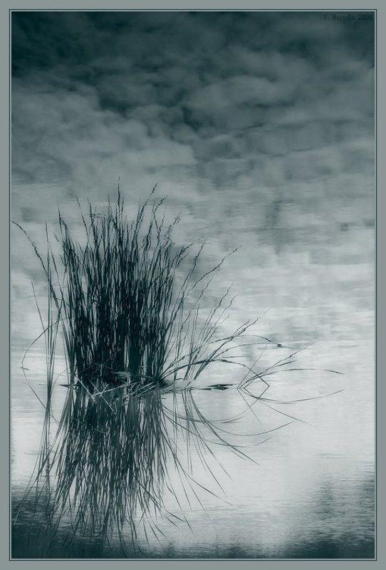 небо, вода, трава Лукоморья больше нет...photo preview