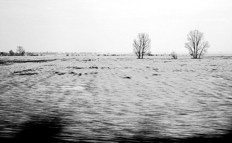 из окна поезда разphoto preview