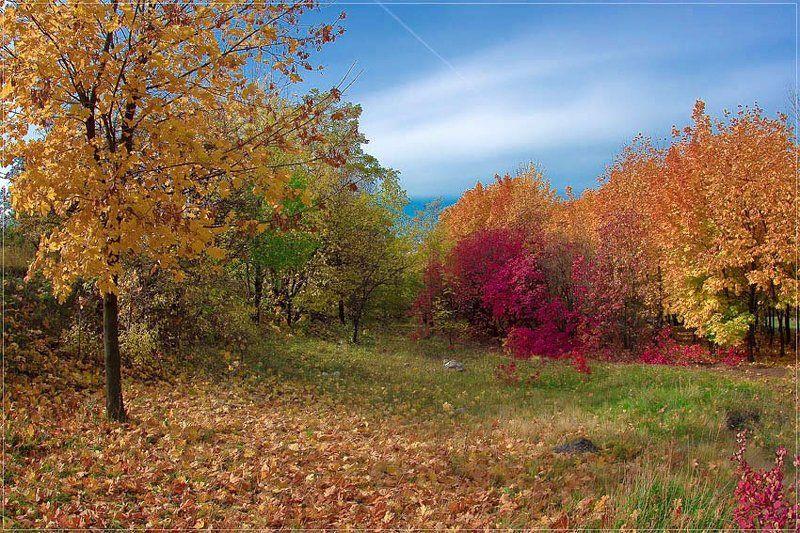 Natur Colorsphoto preview