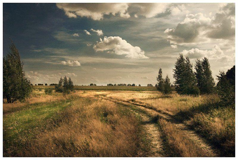 лето,россия,солнце,небо,свобода Русское летоphoto preview