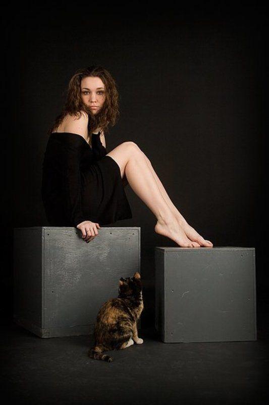 две,кошки Кошки...photo preview