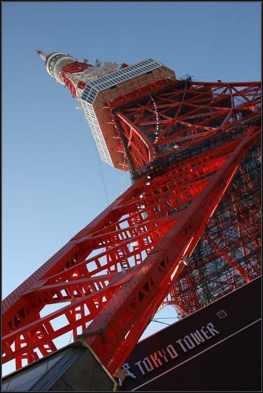 япония, телебашня, токио, tokio tower Tokio Towerphoto preview