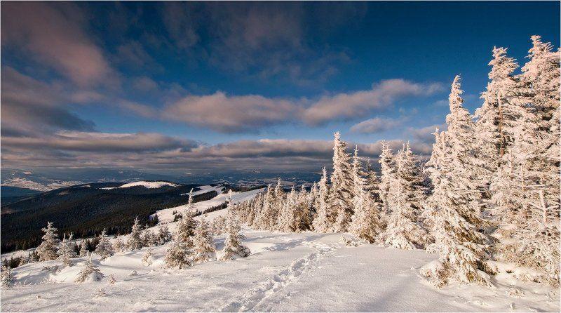 зима опять пришла...photo preview