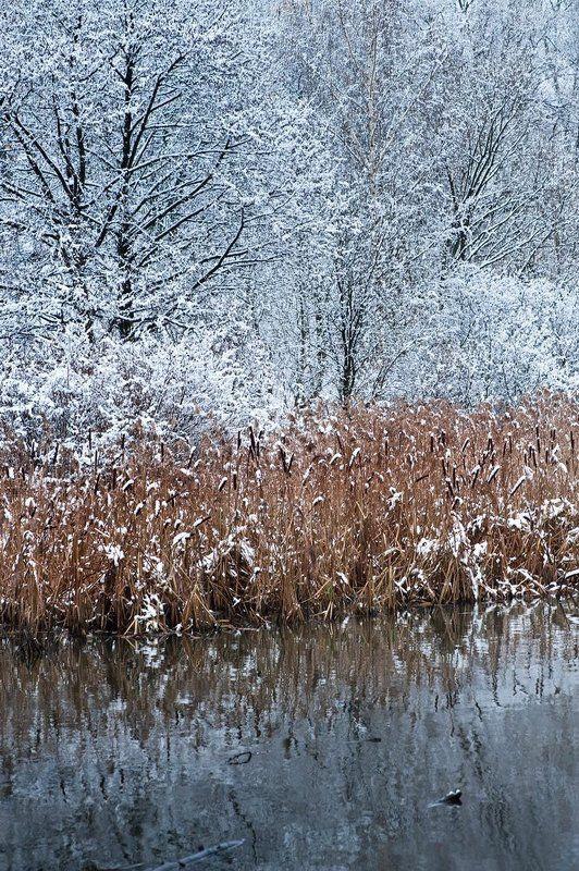 зима, яуза, снег Зима на Яузеphoto preview