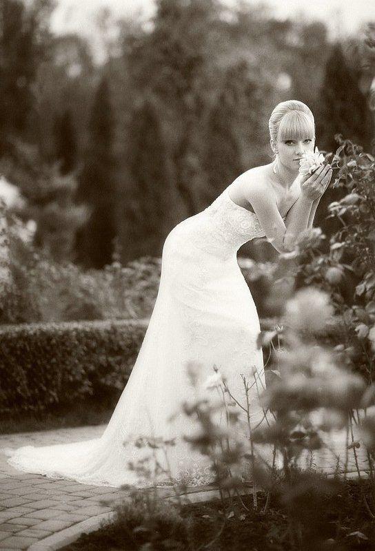 невеста, портрет, свадьба ***photo preview
