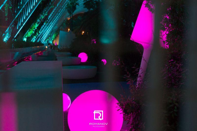 джунгли, город, свет, ночь, освещенИе, силуэт, светимость, архитектура, городской, деревья, круг, фиолетовый, циан, подсветка City junglephoto preview