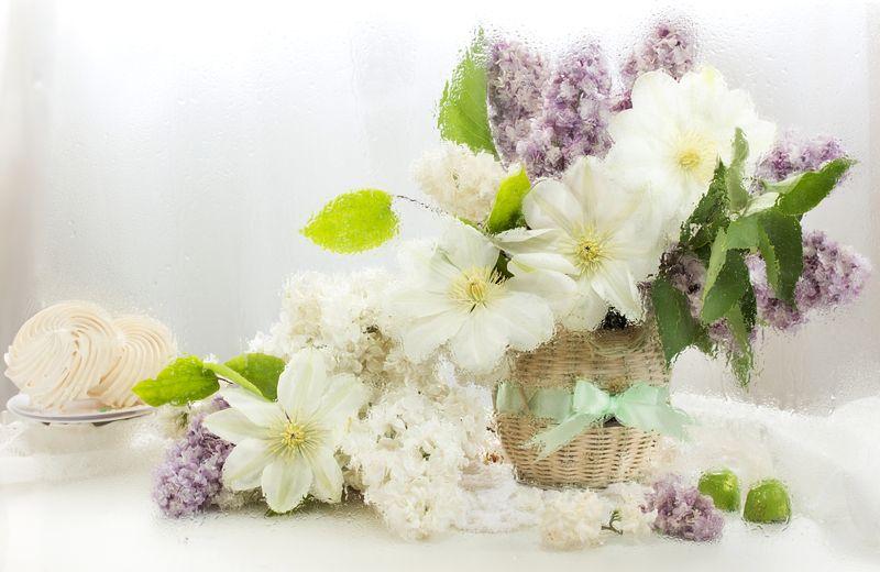 натюрморт, цветы, нежность, сирень, аромат, клематис Аромат весныphoto preview