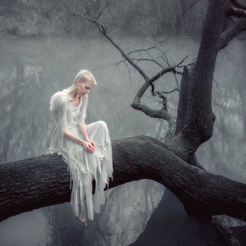 girl, portrait, angel, crow, white, nature, water, tree, dress, fatigue, sadness, silence, russia, krasnodar Fallenphoto preview