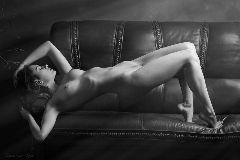 ню, девушка, грудь, обнажённая, диван, красивая photo preview