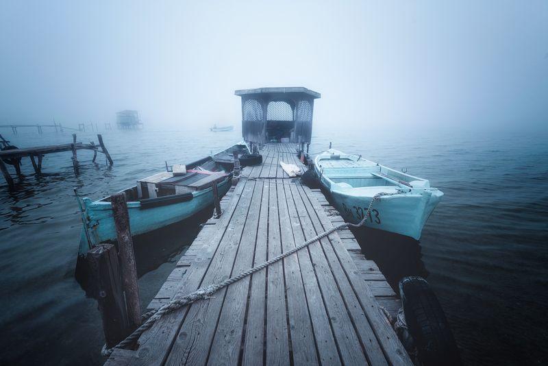 Misty Mondayphoto preview