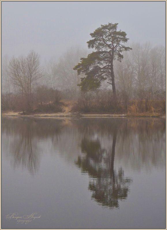 зима, февраль, туман, река, отражение Призрачно всё в этом мире...photo preview