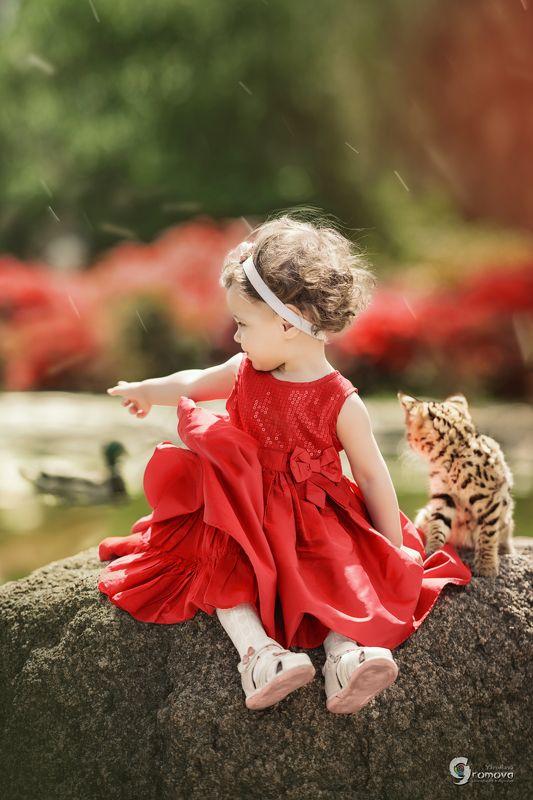 девочка, красное, цветы, лето, котенок, саванна, дружба, цветы Марго и Мангоphoto preview
