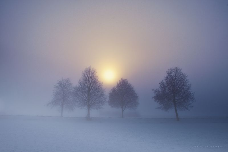 туман,fog,misty,haze,ice,snow,winter,zanfoar,czech republic,nikon d750 потерянный в туманеphoto preview