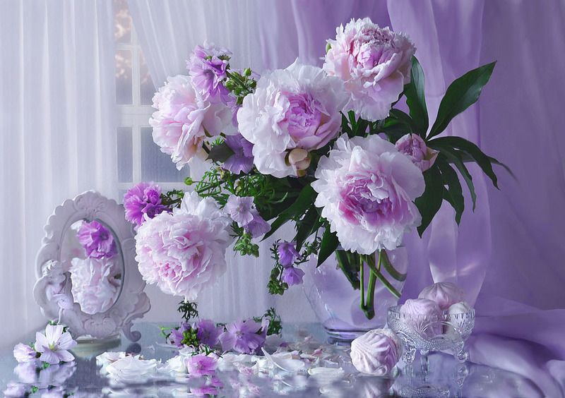 цветы, фото натюрморт, пионы, отражение, лето, зеркало Пионов дивный аромат...photo preview