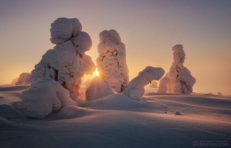 кольский, кольский полуостров, кандалакша, зима, winter, snow, north Закатные игрыphoto preview